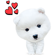 My Best Friend, Woof Woof Sticker for LINE & WhatsApp | ZIP: GIF & PNG