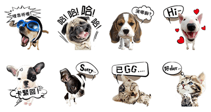 My Dogs and Cats Age Line Sticker GIF & PNG Pack: Animated & Transparent No Background | WhatsApp Sticker