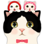 CHOO CHOO CAT TRIO Sticker for LINE & WhatsApp | ZIP: GIF & PNG