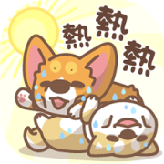 Corgi PonPon & ChaiChai Summer Stickers Sticker for LINE & WhatsApp | ZIP: GIF & PNG