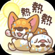 Corgi PonPon & ChaiChai Summer Stickers Sticker for LINE & WhatsApp | ZIP: GIF & PNG