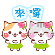 Animated Cats (Summer) Sticker for LINE & WhatsApp | ZIP: GIF & PNG