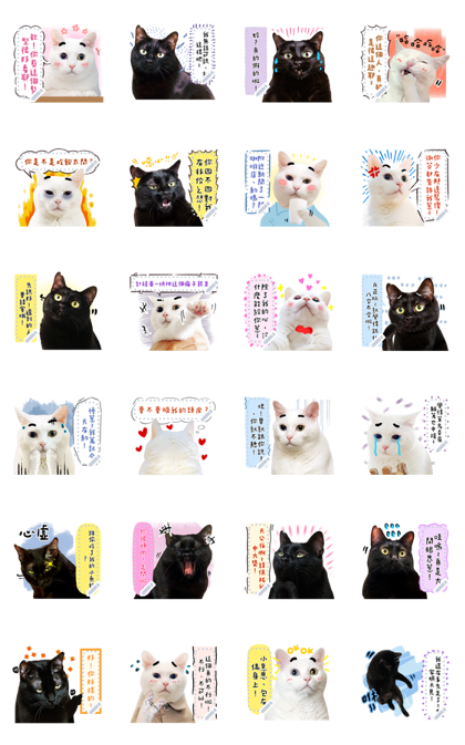DIY message with Baiji (Photo images) Line Sticker GIF & PNG Pack: Animated & Transparent No Background | WhatsApp Sticker