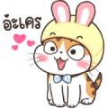 Soidow Cat Animated 2 Sticker for LINE & WhatsApp | ZIP: GIF & PNG