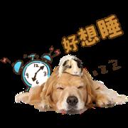 Pet's Murmur Time Sticker for LINE & WhatsApp | ZIP: GIF & PNG