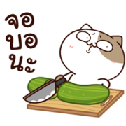 Tofu Cat: Trendy Hits Sticker for LINE & WhatsApp | ZIP: GIF & PNG