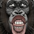 Gorilla Gorilla [BIG] 2: Icebreakers