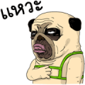 Mao Whatta Pug: Bipolar [BIG] Stickers