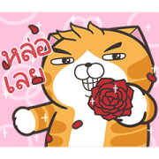 Lan Lan Cat: Moving Moving Sticker for LINE & WhatsApp | ZIP: GIF & PNG
