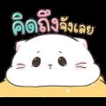 Baby Cat Pop-Ups 4 Sticker for LINE & WhatsApp   ZIP: GIF & PNG