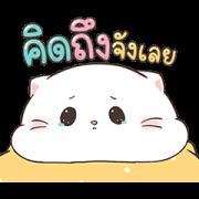 Baby Cat Pop-Ups 4 Sticker for LINE & WhatsApp | ZIP: GIF & PNG