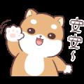 LINE Shopping Hot Topic × Shiba Inu Pipi