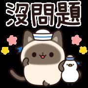 Useful Siamese Cat Sticker(Summer Ver.) Sticker for LINE & WhatsApp | ZIP: GIF & PNG