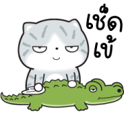 Munkaew Funny Cat 3 Sticker for LINE & WhatsApp | ZIP: GIF & PNG